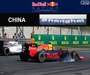 Puzle D. Kuyat Grand Prix Číny 2016