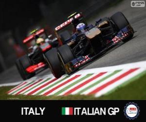 Puzle Daniel RICCIARDI - Toro Rosso - Monza, 2013