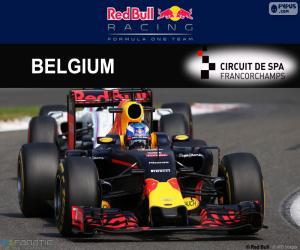 Puzle Daniel Ricciardo, GP Belgie 2016