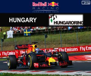 Puzle Daniel Ricciardo, GP Maďarska 2016