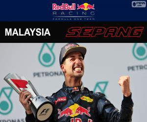 Puzle Daniel Ricciardo, Grand Prix Malajsie 2016
