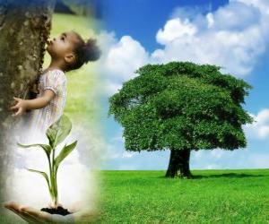 Puzle Den stromů se koná v pátek v dubnu ve Spojených státech. V jiných zemích se slaví v různé dny během vhodného období sadby