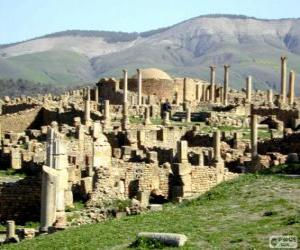 Puzle Djémila, Alžírsko
