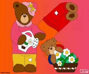 Puzle Dopis K medvědů