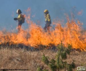 Puzle Dva hasiči, oheň