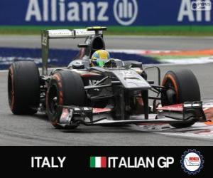 Puzle Esteban Gutiérrez - Sauber - Monza, 2013