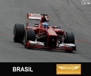 Puzle Fernando Alonso - Ferrari - Grand Prix Brazílie 2013, 3 klasifikované