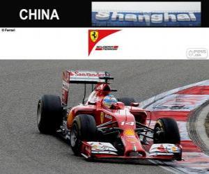 Puzle Fernando Alonso - Ferrari - Grand Prix Číny 2014, 3 klasifikované