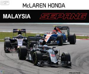 Puzle Fernando Alonso, Grand Prix Malajsie 2016