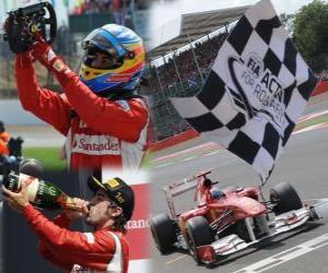Puzle Fernando Alonso slaví vítězství v Grand Prix Velké Británie (2011)