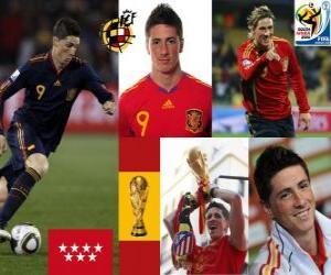 Puzle Fernando Torres (Bylo nás sen), španělského národního týmu vpřed