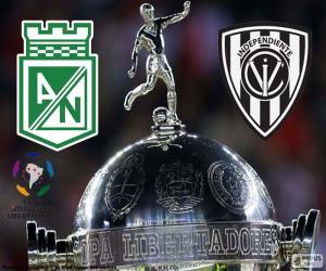 Puzle Finále Copa Libertadores 2016