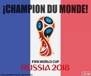 Puzle Francie, mistr světa 2018