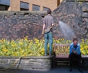 Puzle Gardener tendenci rostliny, zalévání