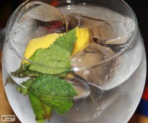 Puzle Gin s tonikem