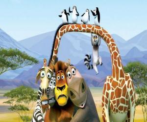 Puzle Gloria Hroch, žirafa Melman, lev Alex, zebra Marty s dalšími protagonisty dobrodružství