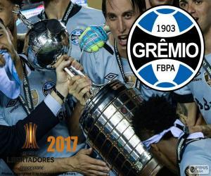 Puzle Gremio, mistr Libertadores 2017