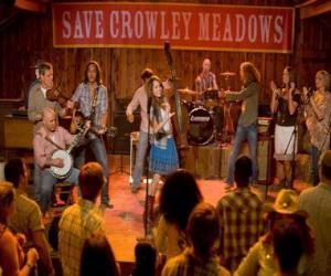Puzle Hannah Montana (Miley Cyrus), a to některým z jeho písní v Crowley Rohy, města, které porodila Miley.