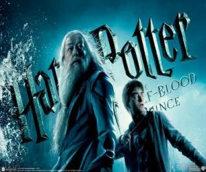 Puzle Harry Potter a Half-Blood Prince