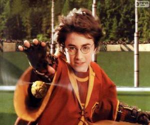 Puzle Harry Potter házet míč