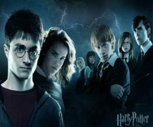 Puzle Harry Potter se svými přáteli