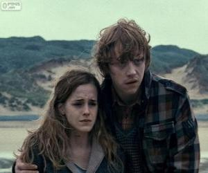 Puzle Hermiona Granger a Ron Weasle