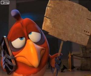 Puzle Hloupá papoušek Belzoni s prkno, které používá k zápisu a komunikovat