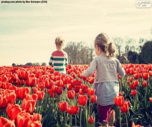 Puzle Holky mezi tulipány
