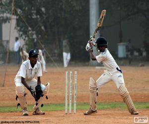 Puzle Hráči kriket