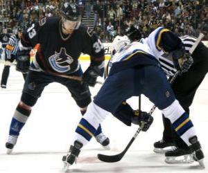 Puzle Hráči v hokejového utkání
