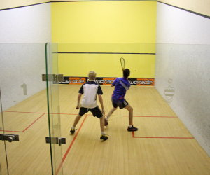 Puzle Hru squash