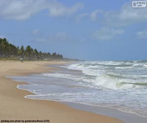 Puzle Imbassai Beach, Brazílie