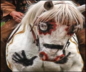 Puzle Indický kůň
