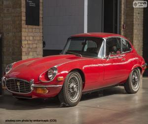 Puzle Jaguar Typu-E