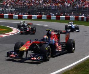 Puzle Jaime Alguersuari - Toro Rosso - Montreal 2010