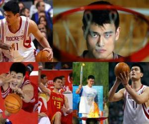 Puzle Jao Ming odejde z profesionální basketbal (2011)
