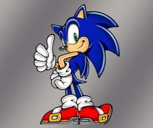 Puzle Ježek Soník, hlavní protagonista videohry Sonic od Sega