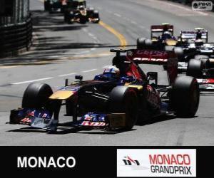 Puzle Jean-Eric Vergne - Toro Rosso - Monte-Carlo 2013