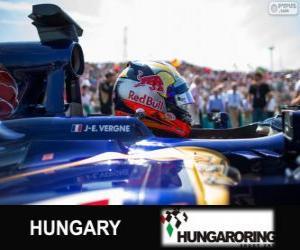 Puzle Jean-Eric Vergne - Toro Rosso - Hungaroring, 2013