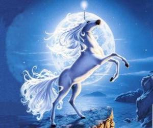 Puzle Jednorožec - mladý kůň se spirálou roh