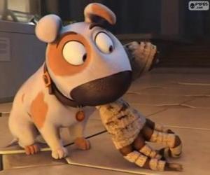 Puzle Jeff psa s rukou mumie v ústí