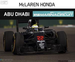 Puzle Jenson Button, Grand Prix Abú Zabí 2016
