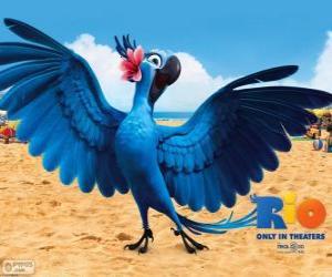 Puzle Jewel je krásná žena papoušek ve filmu Rio