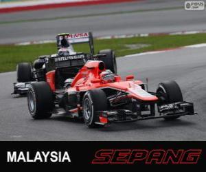 Puzle Jules Bianchi - Marussia - Sepang 2013