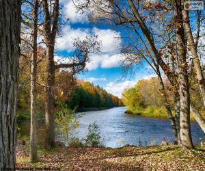 Puzle Jumbo River, Spojené státy