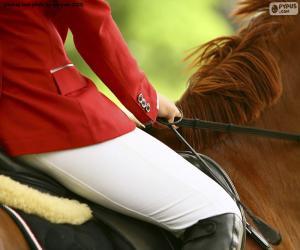 Puzle Kůň a jezdec