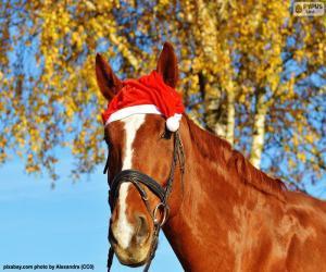 Puzle Kůň s Santa Claus klobouk