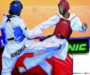 Puzle Karate - Dva karatekas procvičování