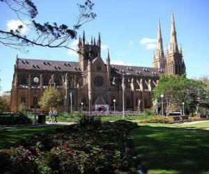 Puzle Katedrála Panny Marie, Sydney, Austrálie