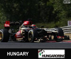 Puzle Kimi Räikkönen - Lotus - Grand Prix Maďarska 2013, svírající klasifikované
